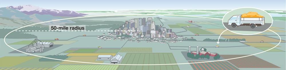 feedable-cities