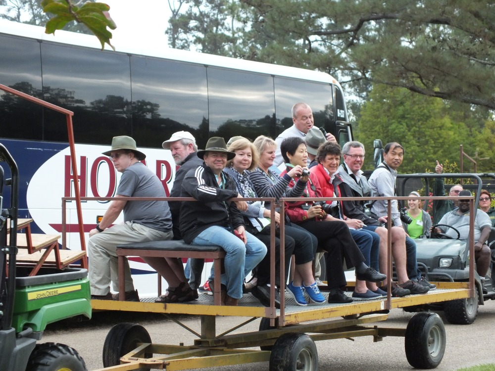 We rode wagons throughout the gardens.